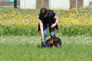 In der Fährtengruppe der Hundeschule Matte werden Hund und Mensch eine korrekte Aufnahme der Fährte, auf ein sicheres Halten der Fährte in gleichmässigem Tempo, auf korrektes Verweisen der Gegenstände