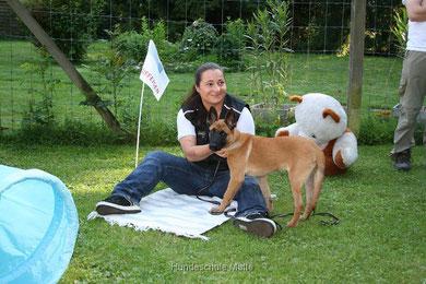 In der Hundeschule Matte werden Welpen im Alter von 10 bis 16 Wochen in Welpengruppen spielerisch auf das Leben vorbereitet.