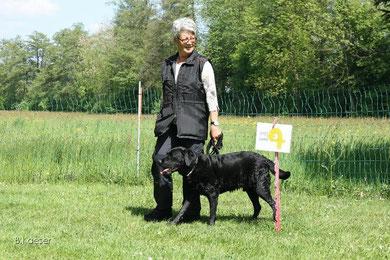 In den Plauschhundegruppen der Hundeschule Matte lernen die Hunde und ihre Menschen spielerisch. Alltagssituationen werden geübt, Gegenstände gezeigt.