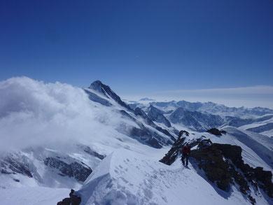 Hinter Fiescherhorn, Jungfraugebiet, Finsteraarhorn, Skitouren, Schweiz