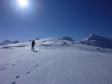 Høgvagltind Jotunheimen Fjellskitur