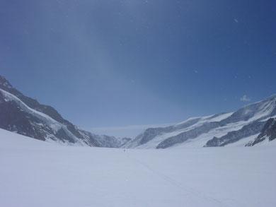 Walliser Fiescherfirn, Jungfrausgebiet, Skitouren, Schweiz