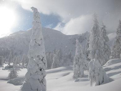 Winter Schladming-Dachstein Ski amadé