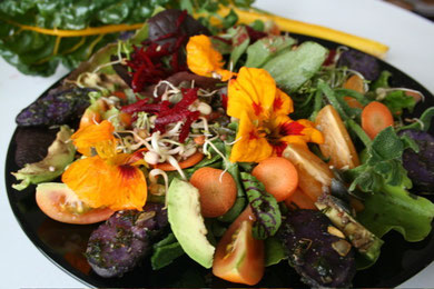 Rainbow fall salad with edible flowers and truffle potatos