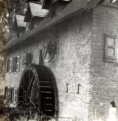 Bild: Udo Müller  /   Bild kann durch anklicken vergrößert werden.