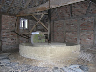 Cider press at Hartlebury Castle, October 2011.