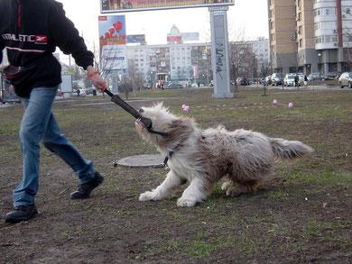 Баттерфляй ездит по площадке