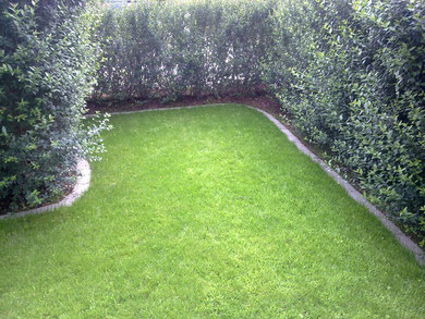 Rasenfläche nachher