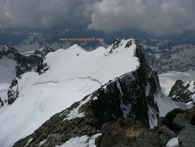 Der Spallagrat mit Schneeflanke vom Piz Bernina gesehen