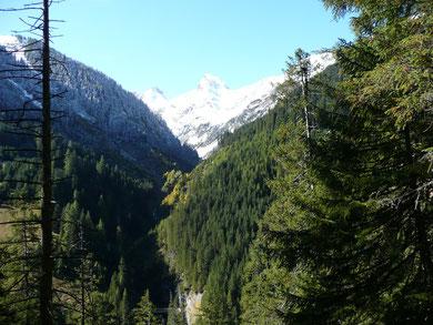 Blick vom Höhenweg ins Madautal