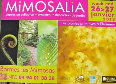 Mimosalia Bormes les Mimosas