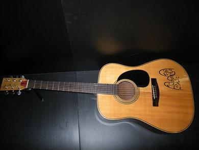 モヘジギター