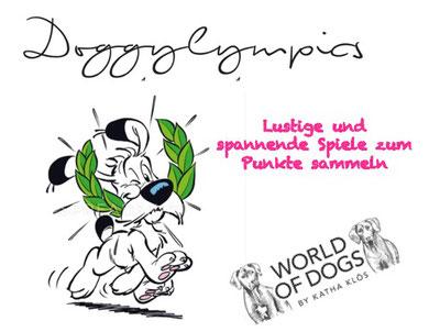 Hundeschule, Butzbach, Hund, Training, Sommer, Beschäftigung, Doggylympics, Fun-Dog, Hundetraining