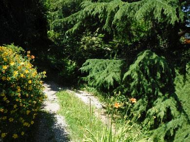 giardino comune Casa di Cinti