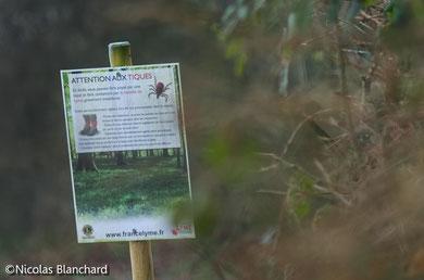 """Panneaux préventifs """"attentions aux tiques"""" installés aux abords de la forêt d'Ecouves"""