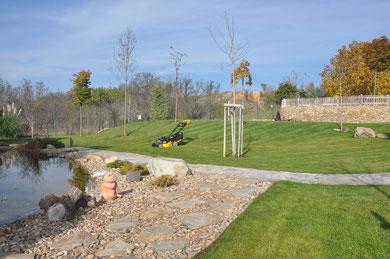 plantar cesped solnatur jardineria Alcala de Henares