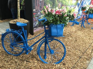 bicicletta pitturata di blu con tulipani nel cestino, opera artistica nel Keukenhof Garden a Lisse, in Olanda
