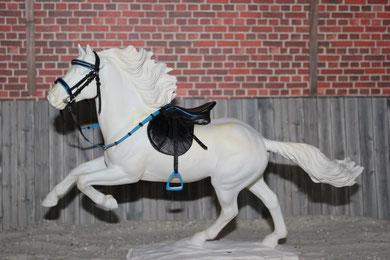 Ponyset