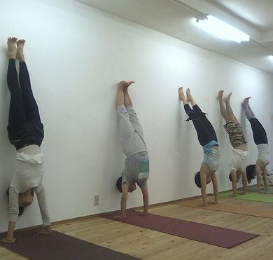 yoga pose - hand stand
