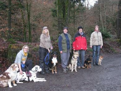 Fun Trail Dogs