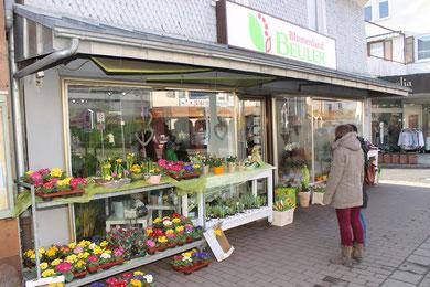 Das Blumenland Beuler Altenstadt bietet Ihnen eine Vielzahl an Saisonblumen, Schnittblumen und ein großes Pflanzensortiment.