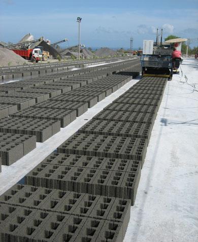 Ponedora de bloques de concreto