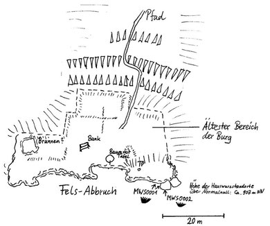 Standort der beiden Formen von Sempervivum tectorum