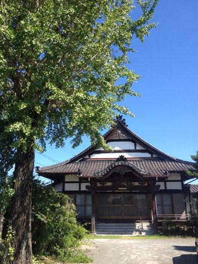 8月の勝嚴寺本堂