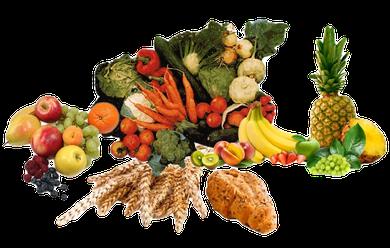 fc4eb0cf3c Eine gesunde, möglichst naturbelassene, artge- rechte und ausgewogene  Ernährung und das Verstehen, warum man das tut, ist die Grundlage für den  homogenen ...