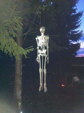 """Skelett """"Fred"""" sorgte, zumindest kurz, doch bei einigen für Angst und Schrecken"""