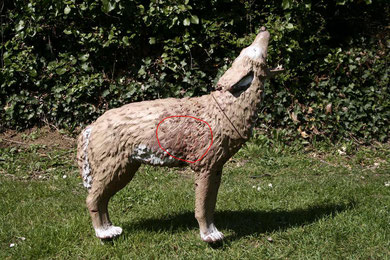 coyote hurlant  srt  zone tué 9