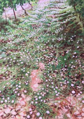 Tapis de fleurs, pastel 60x80 Sylvie Berman artiste peintre