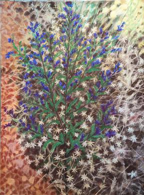 Bourrache en gloire pastel 60x75 Sylvie Berman artiste peintre