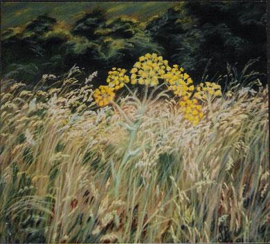 Coeur des Corbières, pastel 65x50 Sylvie Berman artiste peintre