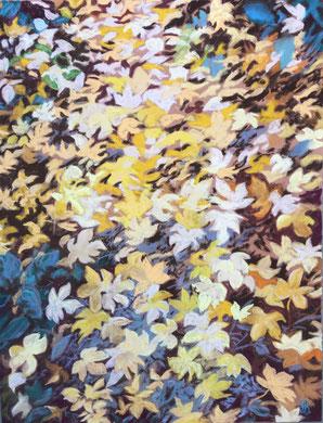 Chemin d'érable,  Pastel 65x50 cm   Sylvie Berman artiste peintre