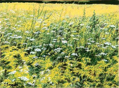 Prairie d'été, pastel 65x50 Sylvie Berman artiste peintre