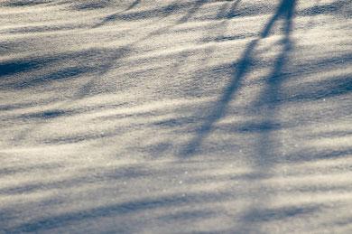 凪のメロディー    「PHOTOHITO」第6回フォトコンテスト「冬の光」入選