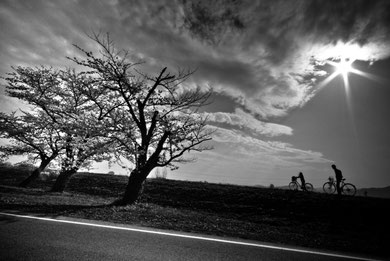 アノヒ ソラヲ    マイコミジャーナル第5回いつまでも残したい「道」にて「ピクトリコ賞」