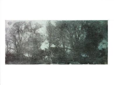 MEMOIRE 2, gravure, 40 x 50 cm, 2013