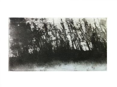 MEMOIRE 1, gravure, 30 x 40 cm, 2014