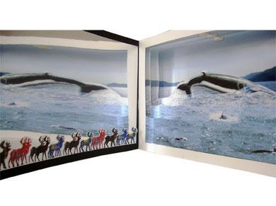 QUEBEC, LA NATURE S'OFFRE EN SPECTACLE, livre-théâtre, 19 x 29 cm (19 x 280 ouvert), Editions Rafaël Andréa, 2011