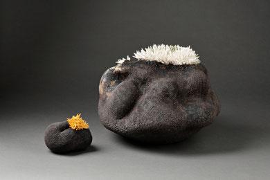 VIES DE MER, raku, entre 15 et 40 cm de large, 2016