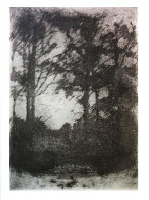 MEMOIRE 3, gravure, eau-forte, 40 x 50 cm, 2012