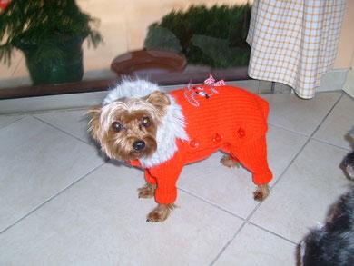 manteau tricoté avec pattes pour julie
