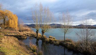Erlacher See/Januar 2012