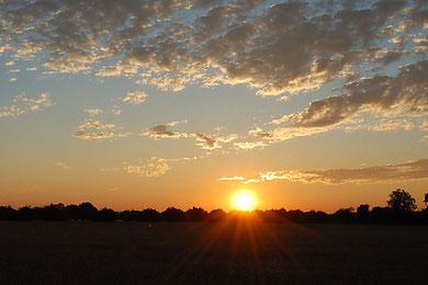 Sonnenuntergang in den Feldern