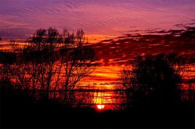 Sonnenuntergang am Altrhein(Biedensand)