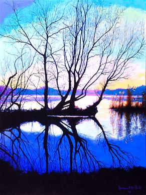 Autumn reflectios Acrylics on canvas 80x60cm  2016