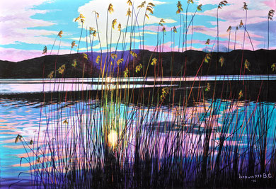 Reflections in the reeds Acrylics on canvas 80x100 cm  2016