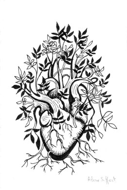 Coeur Plante Aline Siffert